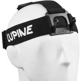 Lupine Wilma / Wilma R Bandeau, black